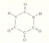 allossana2